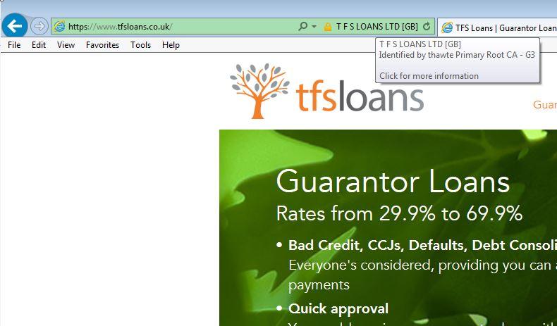 tfs loans domain name